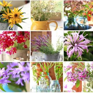 Wildflower Series Recap
