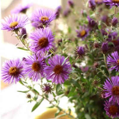 Wildflower Centerpiece #13