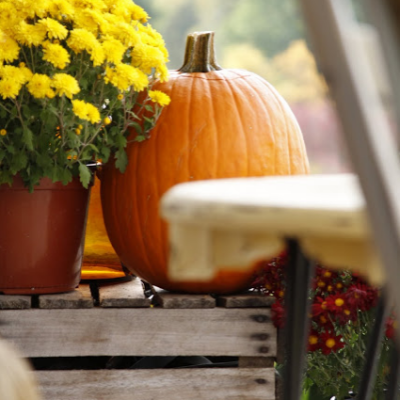 A Little Bit of Fall on the Side Porch of a Log Home