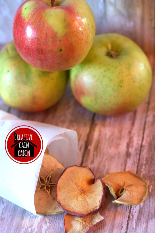 Healthy Apple Chip Snack