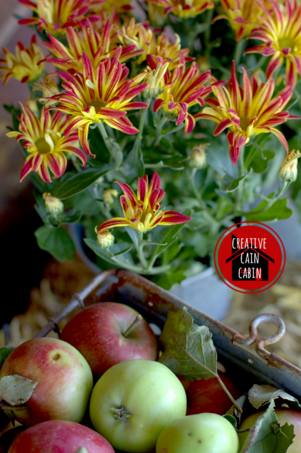 Mums and Apples