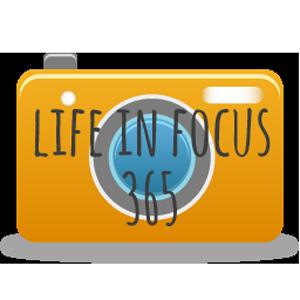 lifeinfocus365