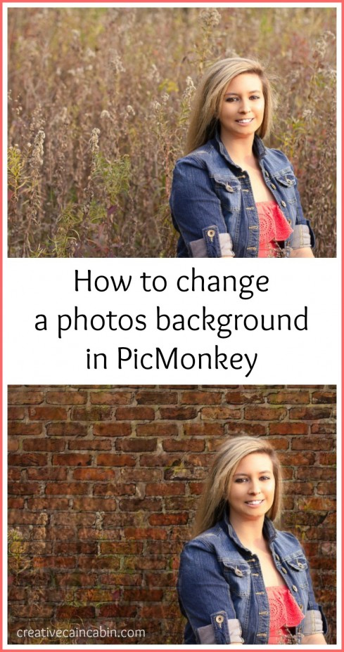 How to use Textures in PicMonkey to Change the Background of a Photo