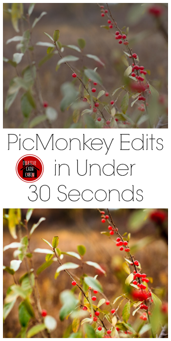 Photo Edit in Picmonkey