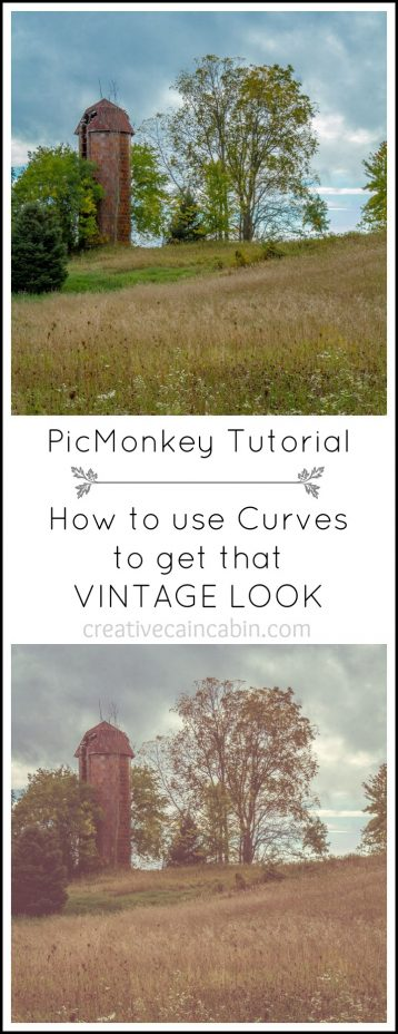 PicMonkey Tutorial how to use Curves to get that VINTAGE LOOK