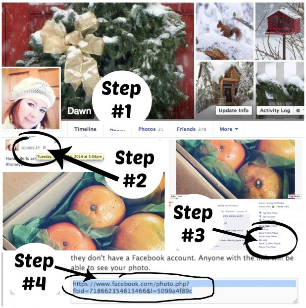 How to add a photo link from Facebook