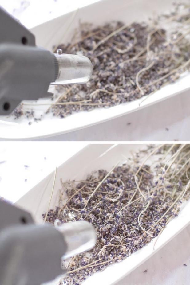 lavender vacuum