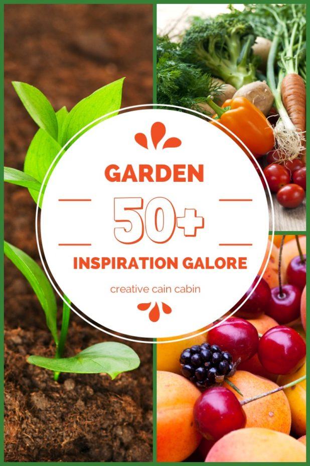 Garden Inspiration ~ 50+, Ideas, Tips and Tricks