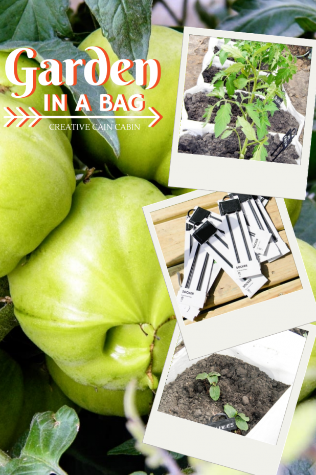 Garden In a Bag ~ Great for Small Spaces