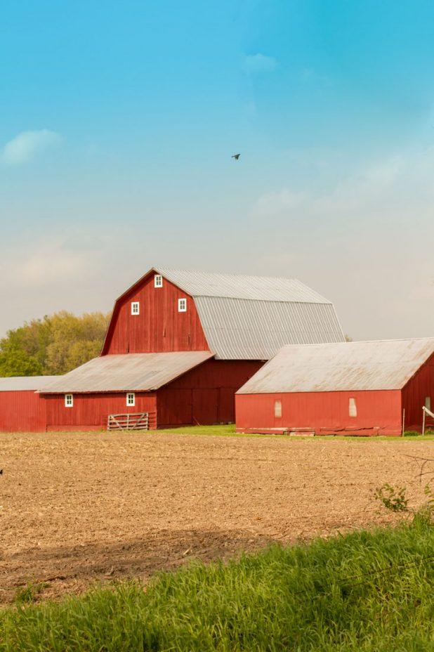 Red Barn | Pure Michigan | Country Living | twitter.com/CCainCabin  | http://www.pinterest.com/dawncain/ | www.facebook.com/creativecaincabin
