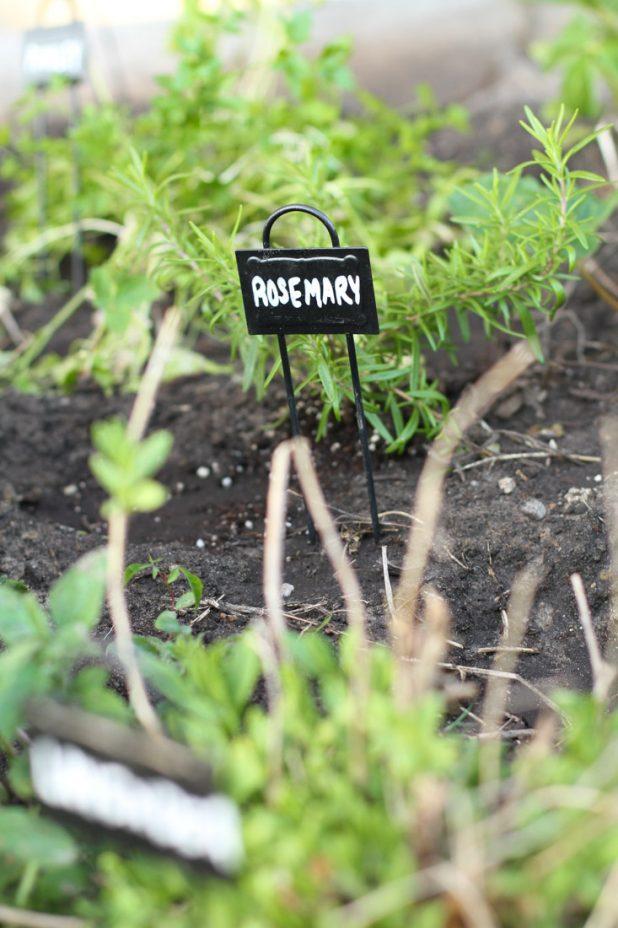 Container Herb Garden |Raised Bed Herb Garden | twitter.com/CCainCabin | http://www.pinterest.com/dawncain/ | twitter.com/CCainCabin | http://www.pinterest.com/dawncain/ | www.facebook.com/creativecaincabin | #RaisedBedGardening | #HerbGarden |#ContainerGarden