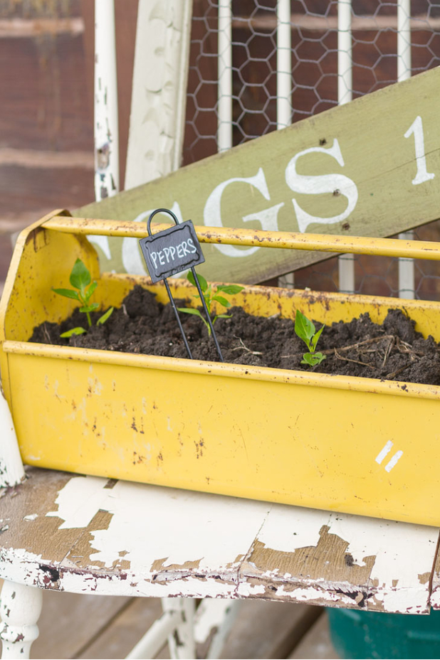 Container Gardening | Use the Unexpected | Use What You Already Have | Twitter.com/CCainCabin | pinterest.com/dawncain/ | #ContainerGardening