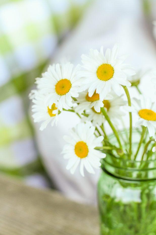 Wild Daisy's | Green Mason Jar |Creative Cain Cabin