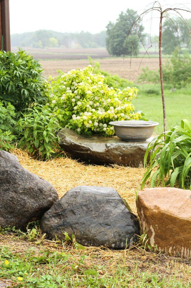 Landscape Ideas on the Cheap | Creative Cain Cabin