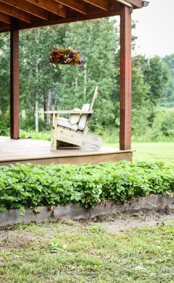 Strawberry Patch | Log Home Porch | Creative Cain Cabin