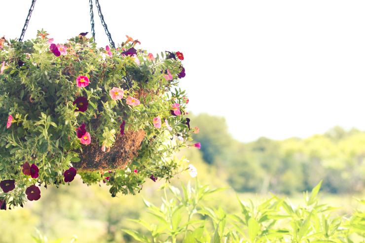 Hanging Basket | Creative Cain Cabin