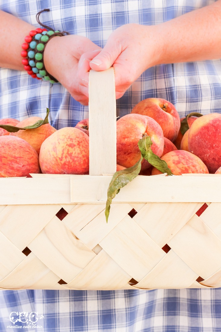 How to Dehydrate Peaches   Creative Cain Cabin