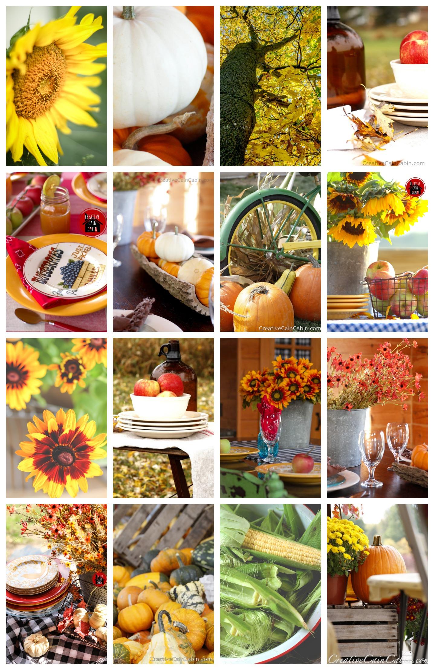 50+ Fall Ideas |Creative Cain Cabin