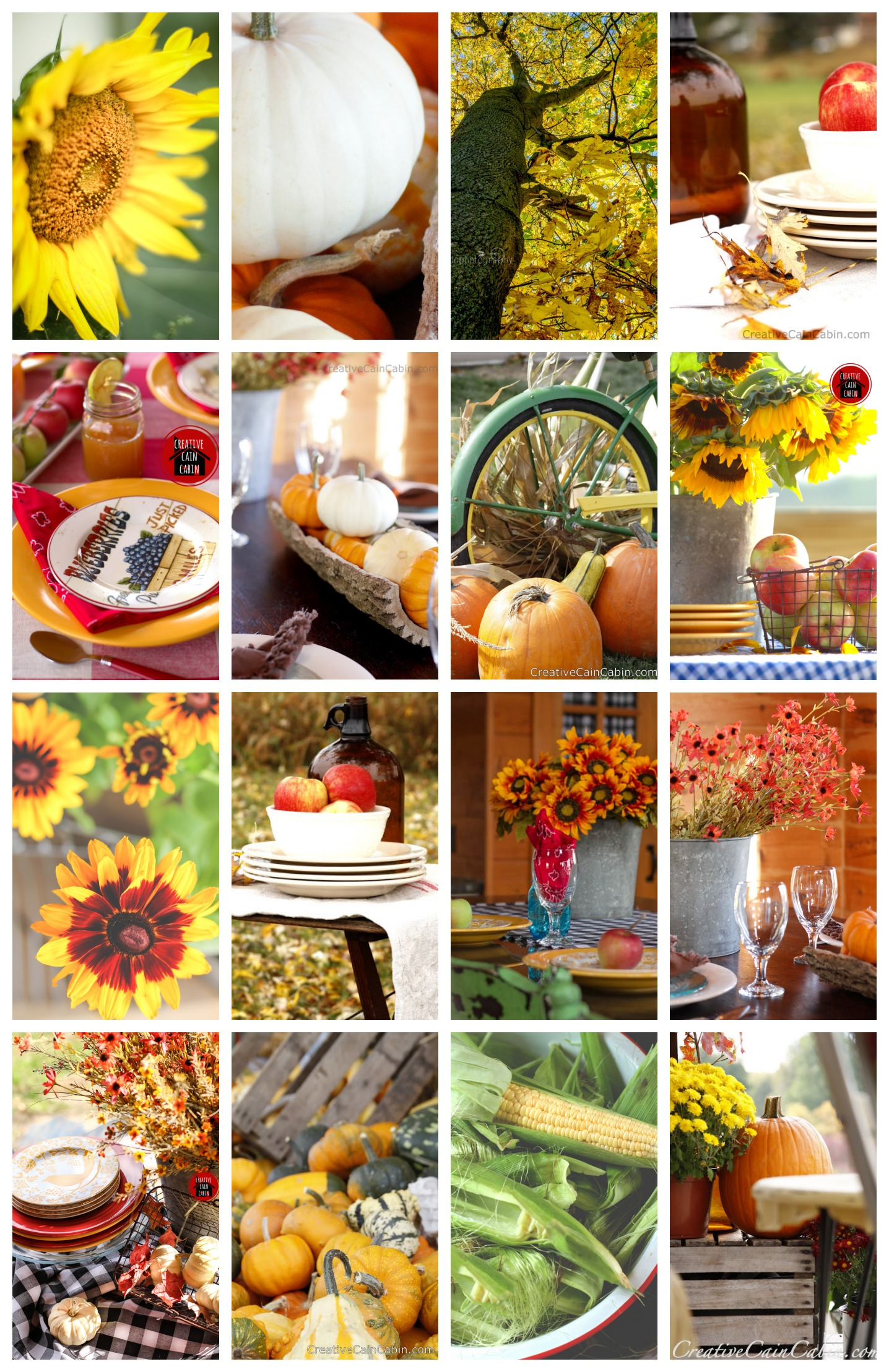 50+ Fall Ideas |Creative Cain Cabin