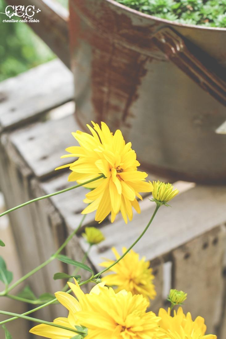 False Sunflower Blooms | Creative Cain Cabin
