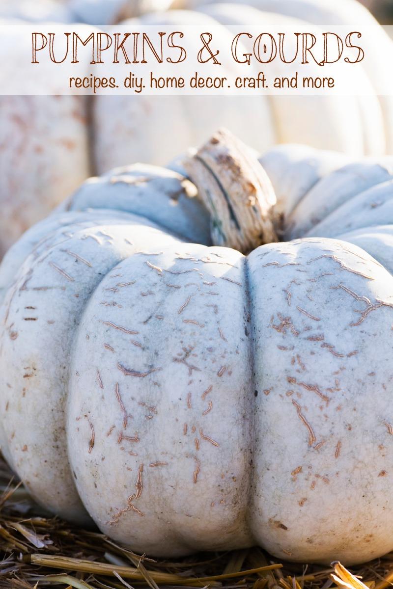 Pumpkin & Gourd deas |  Creative Cain Cabin