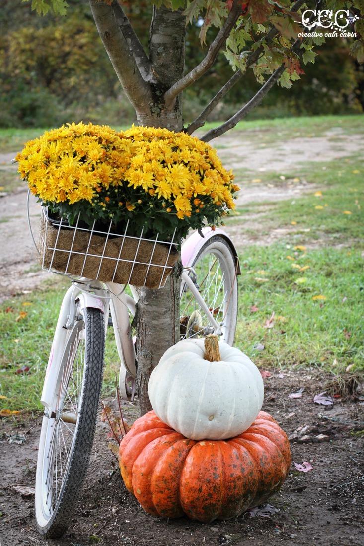 Fall Bike Basket   Creative Cain Cabin