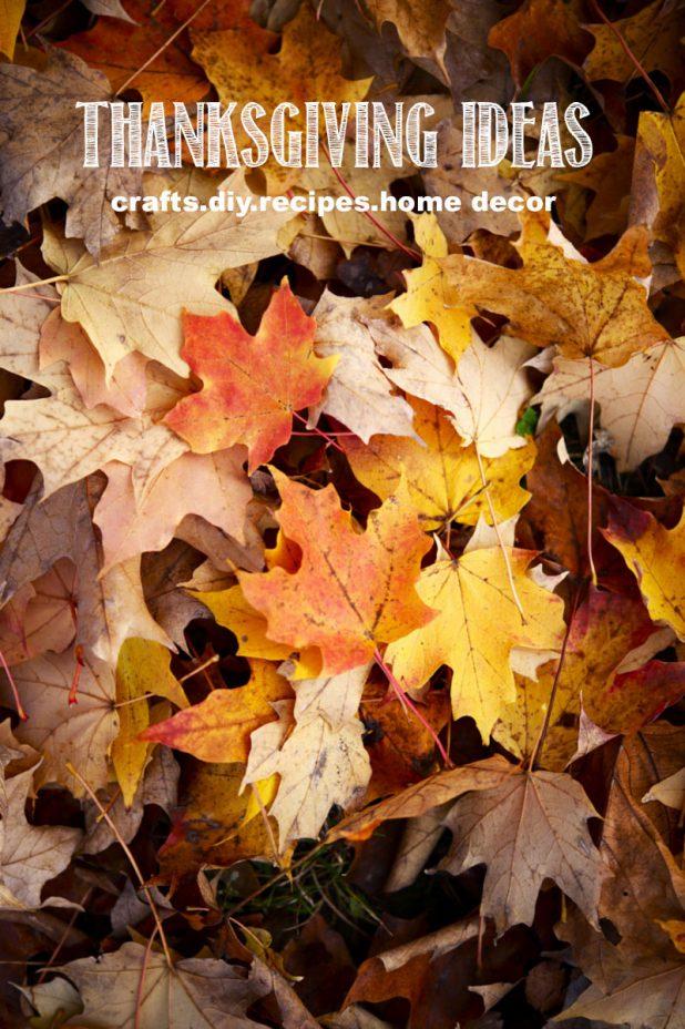 Thanksgiving Ideas | DIY | Crafts | Recipes | Home Decor | creativecaincabin.com