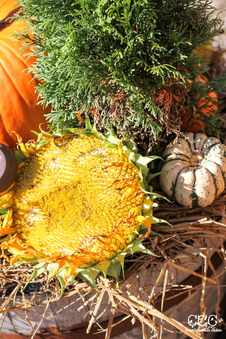 Natural Fall Elements For Decorating   Creative Cain Cabin