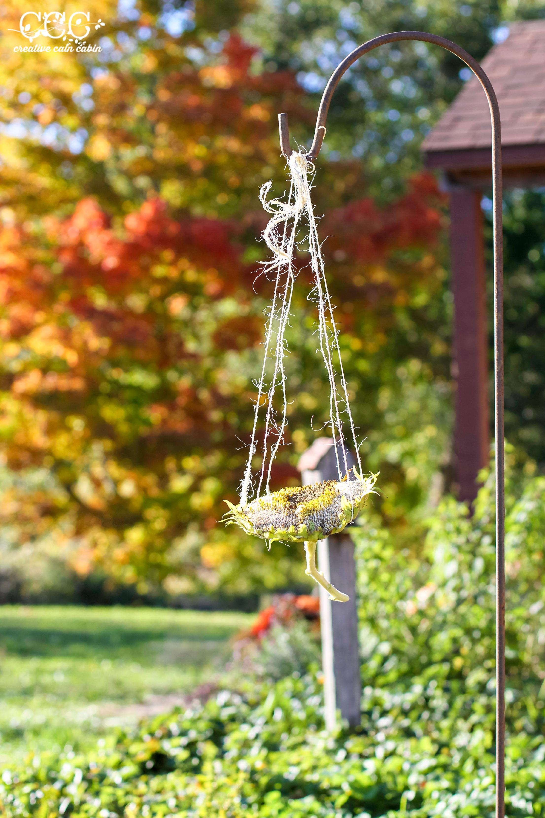 Sunflower Bird Feeder | Easy DIY | Creative Cain Cabin