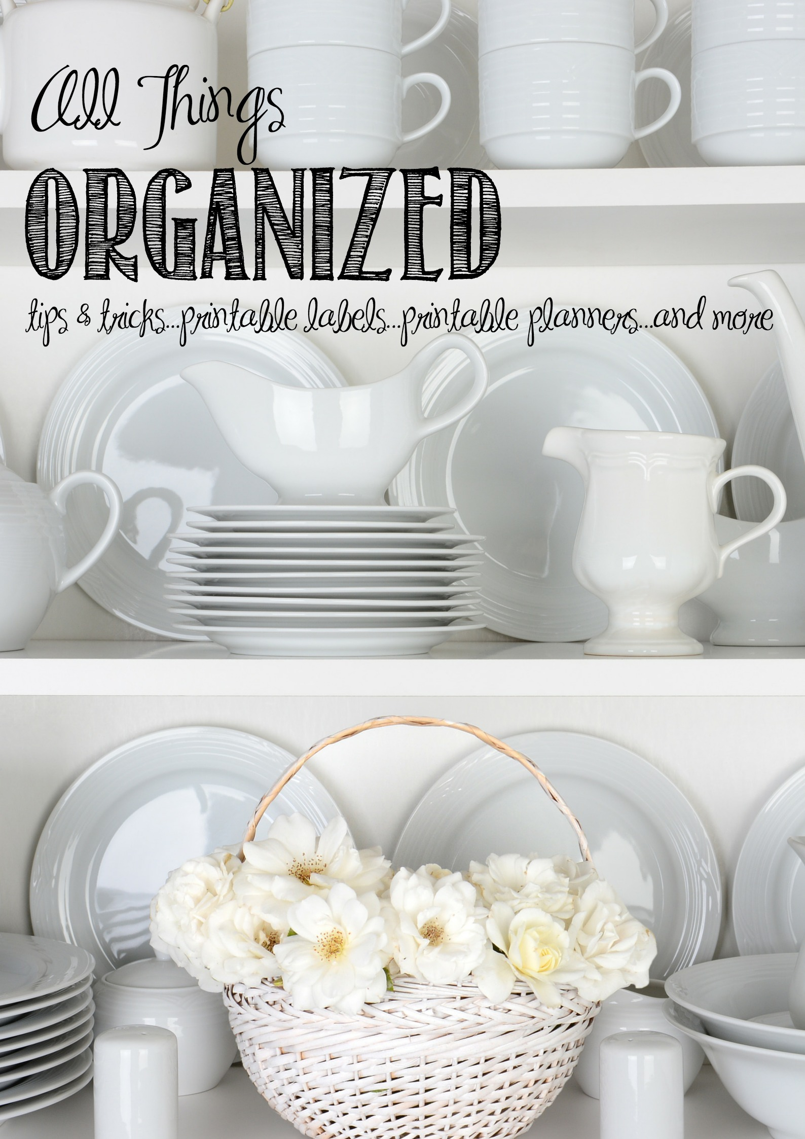 Organization, Cleaning, and Healthy Lifestyle Tips & Tricks