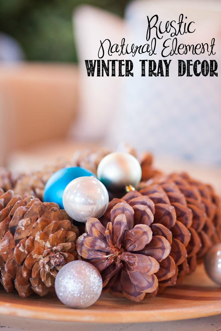 Easy Rustic, Natural Element Winter Tray | Christmas Tray | Holiday Decor | Creativecaincabin.com