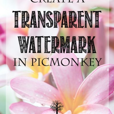 How To Create & Add a Transparent Watermark In PicMonkey
