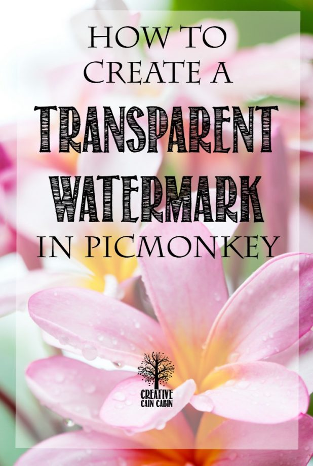 How To Create a Transparent Watermark in PicMonkey | Step by Step Photo and Text Instructions | CreativeCainCabin.com