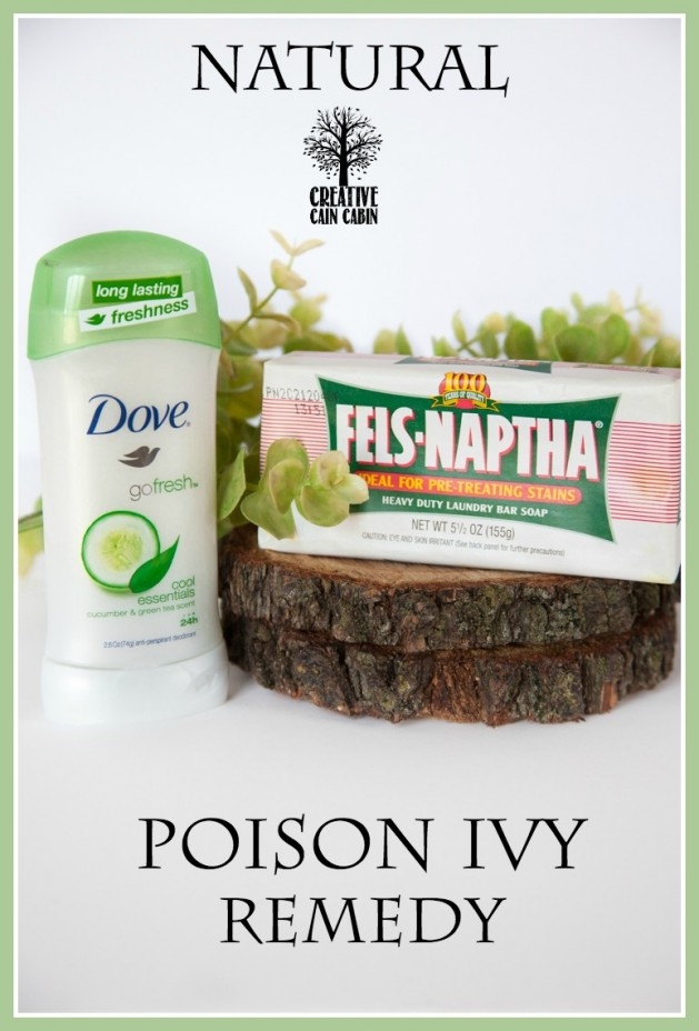 Natural Poison Ivy Remedy | Drug Free | CreativeCainCabin.com