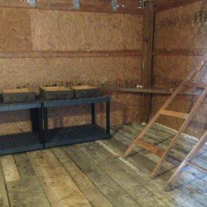 Chicken Coop Build Using Salvaged Material | CreativeCainCabin.com