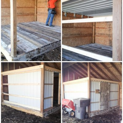Chicken Coop Build Part 2