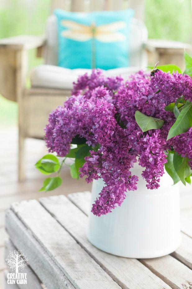 Lilacs | Purple Flower | CreativeCainCabin.com