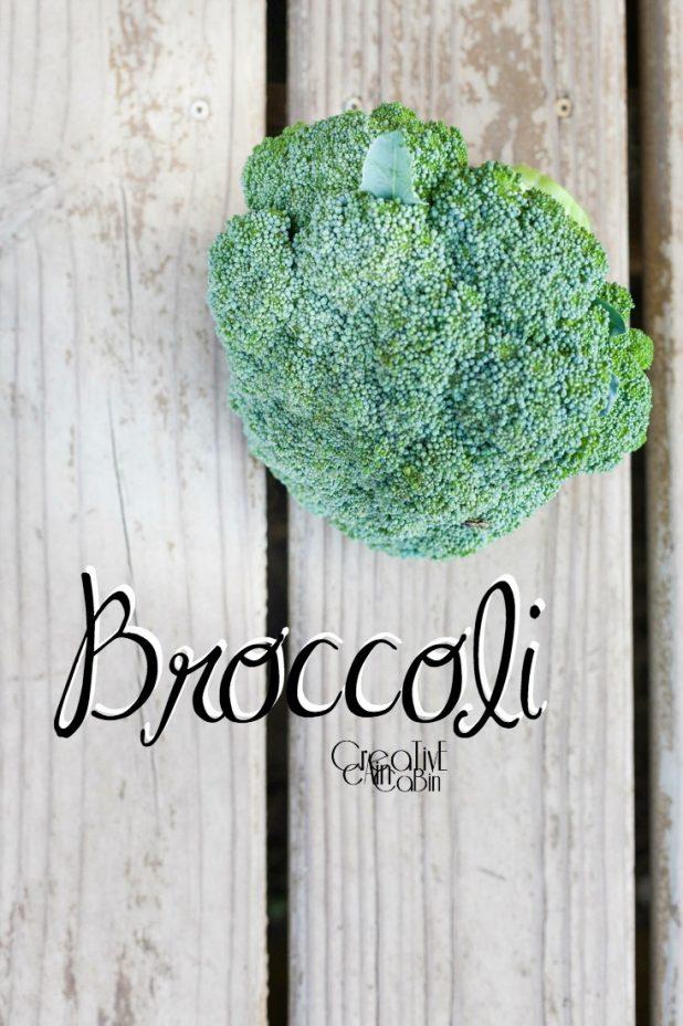 Broccoli | Organic Vegetables | Garden | Vegetable Garden | Harvest | CreativeCainCabin.com