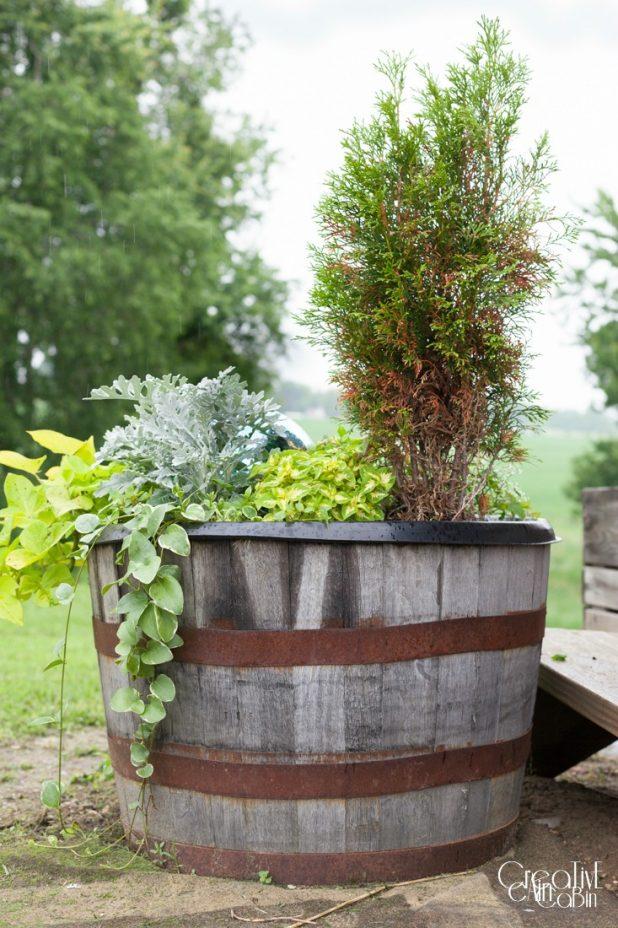 Whiskey Barrel Gazing Ball Garden   Garden   Container Garden   CreativeCainCabin.com