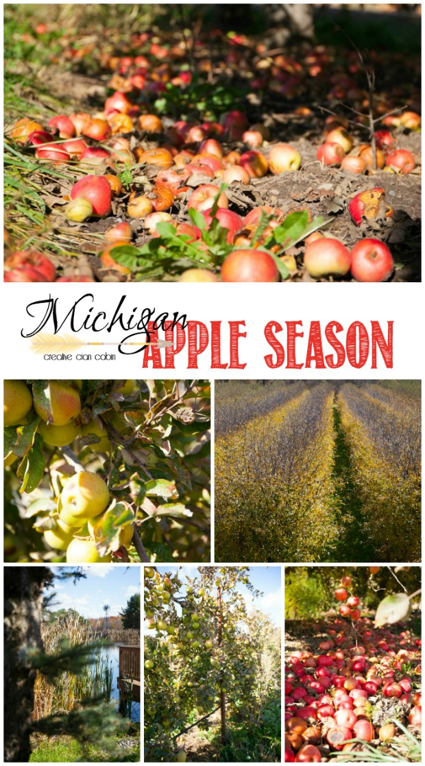 MichiganAppleSeason