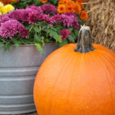 Easy Fall Decorating Using Pumpkins and Mums