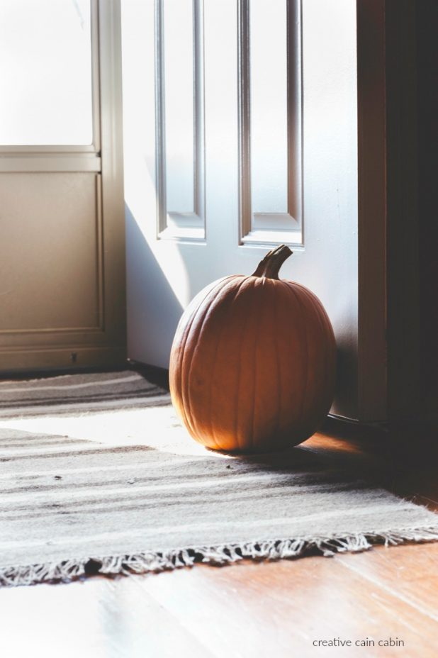 Use a Pumpkin in Fall as a Door Stop