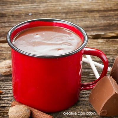 80 Calorie Hot Chocolate Recipe That Tastes Delicious