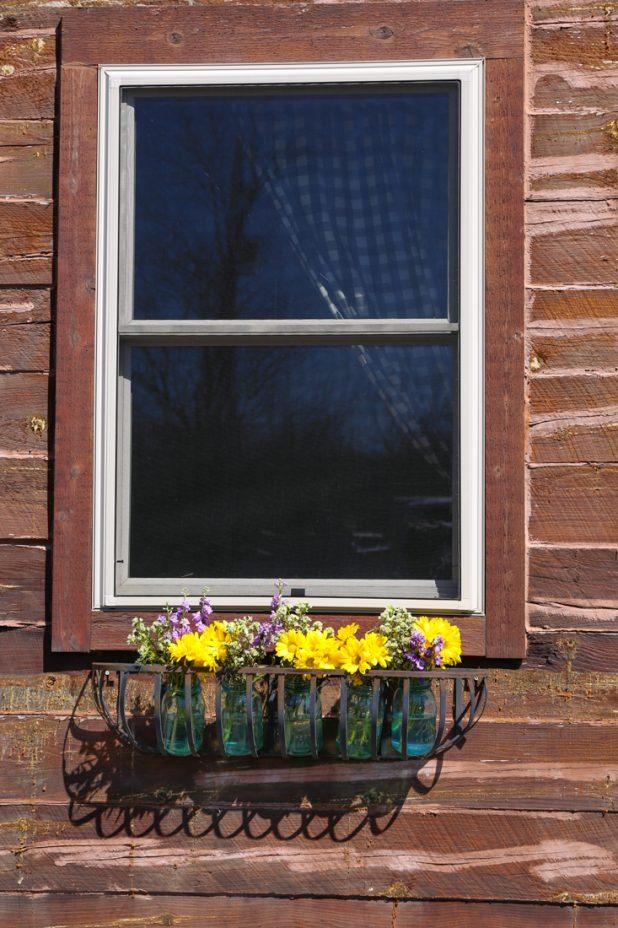 Spring Window Box