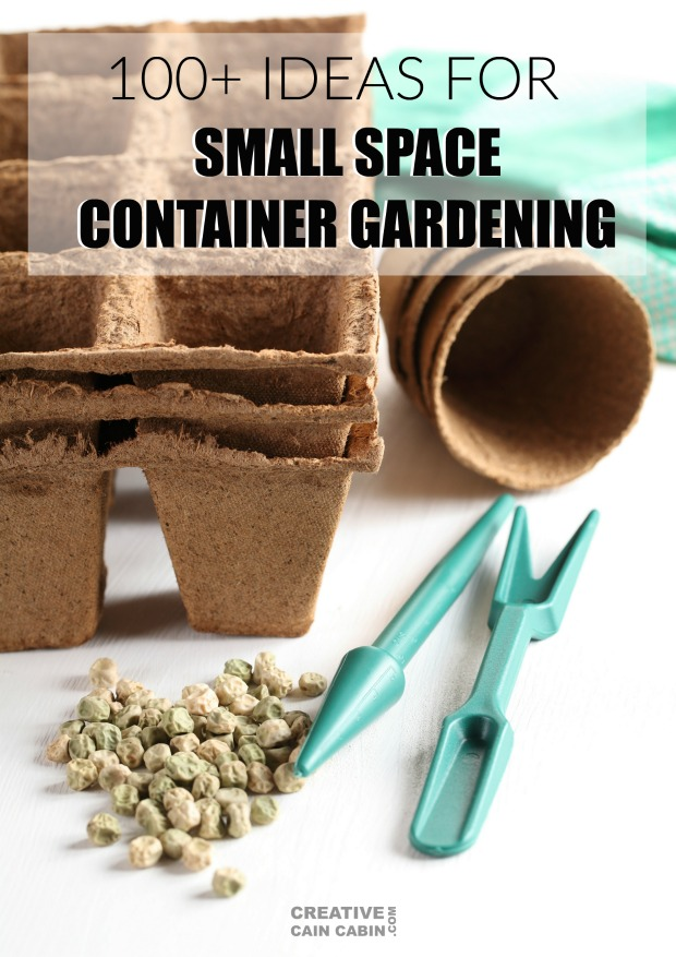 100 + Ideas and Tips for Small Space Container Gardening