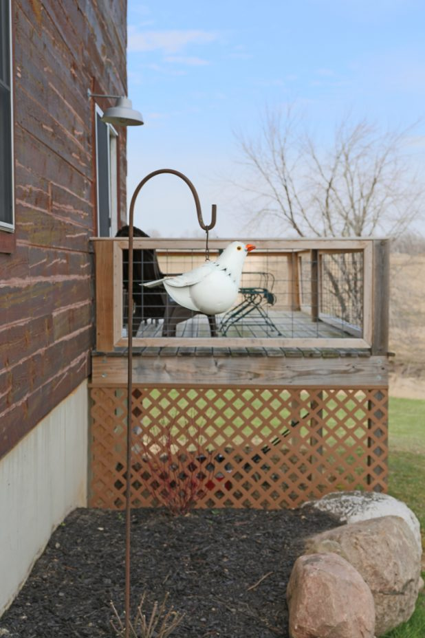 White Pigeon Bird Feeder