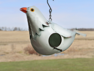 White Pigeon Bird Houe