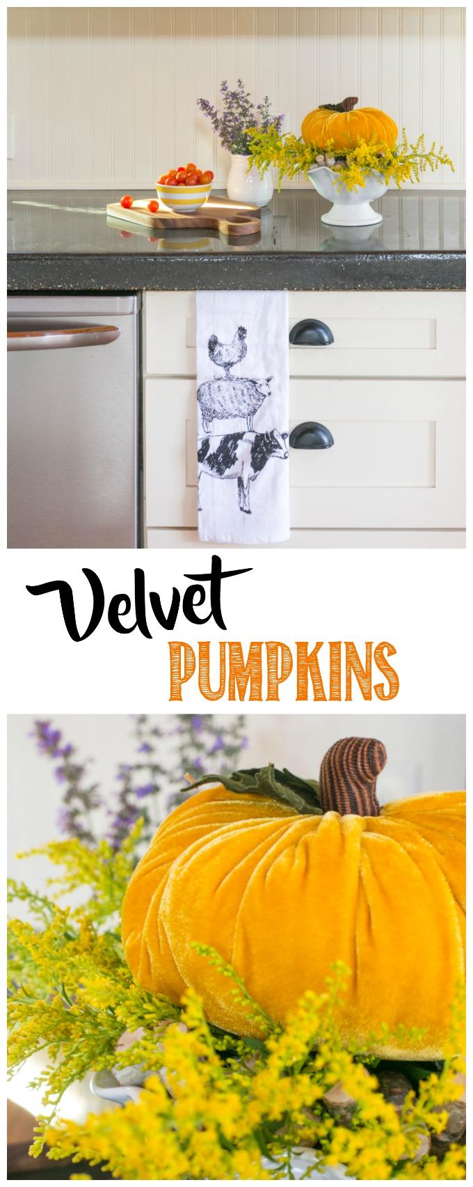 Velvet Pumpkin, Fall Home Decor, Popular Pin