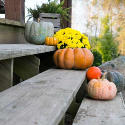 Rustic Fall Porch Entrance Using Exotic Pumpkins