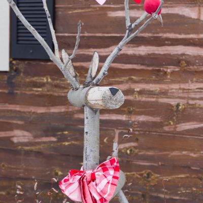 Rustic Valentine Deer